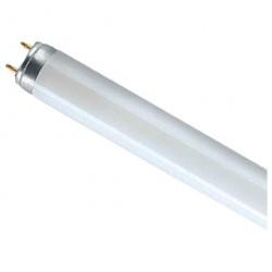 Лампа Osram L18W/765
