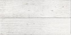 Плитка настенная San Remo белый 50*25 GT12VG