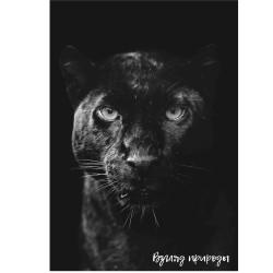 """Постер 47х68см """"Пантера"""" на вспененном ПВХ"""