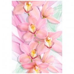 Фотообои Орхидеи Х 5 Премиум 194*136см /4 листа/